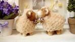 Đôi cừu